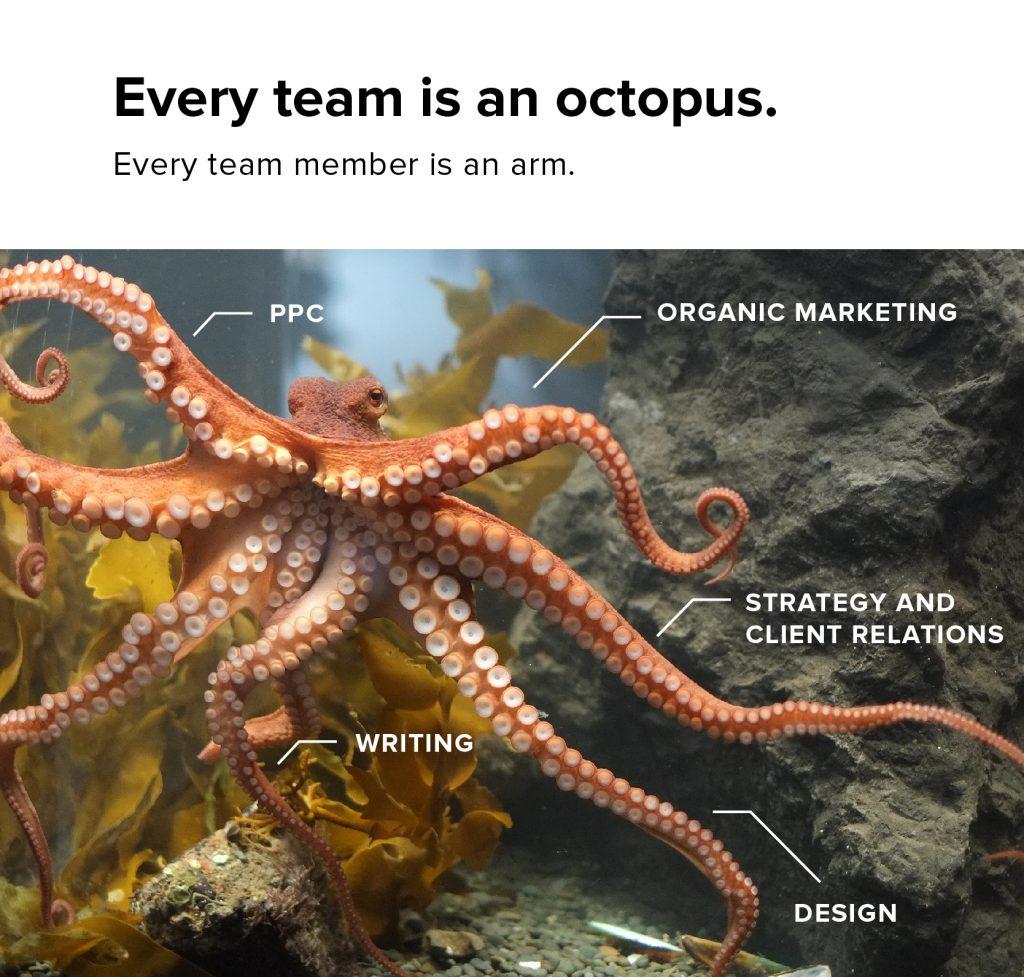 marketing octopus diagram
