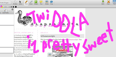 twiddla is pretty sweet